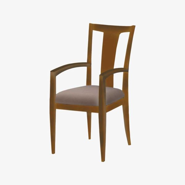 Dining Chair DIN-CH-02